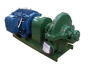 Deming 5062 Series Horizontal Split Case Pump